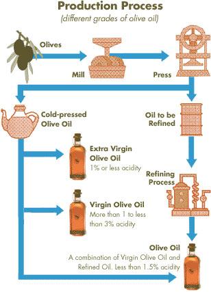 History of Greek Olive Oil - The Olive Oil Cold Press